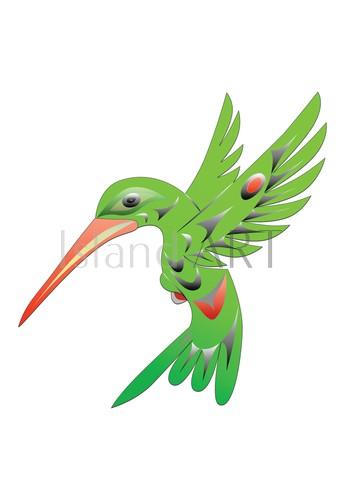 Doug LaFortune - Doug LaFortune - Hummingbird