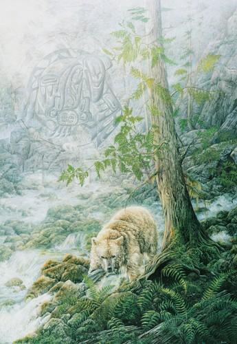 Judi Wild - Judi Wild - Guardian Of The Spirit Bear
