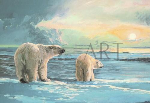 Lissa Calvert - Lissa Calvert - Arctic Light