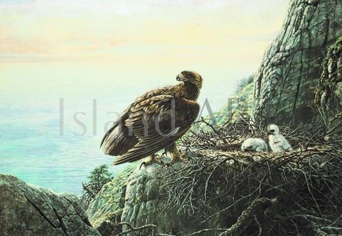 Lissa Calvert - Lissa Calvert - Golden Eagle