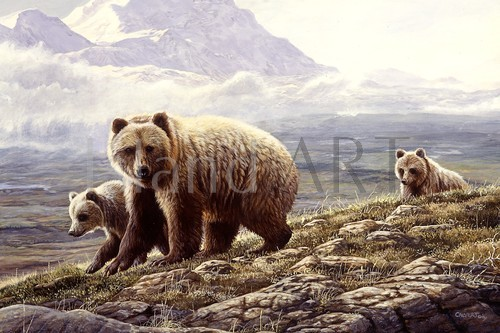 Lissa Calvert - Lissa Calvert - Grizzly with Cubs