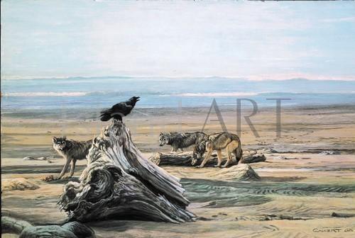 Lissa Calvert - Lissa Calvert - Raven and Wolves