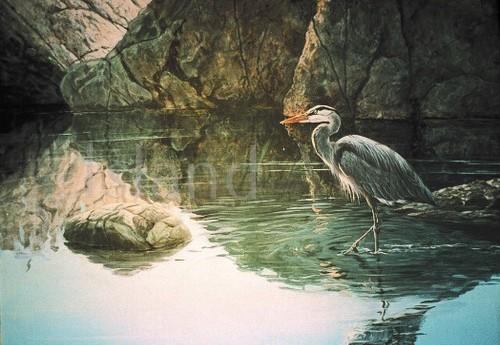 Lissa Calvert - Lissa Calvert - The Blue Heron