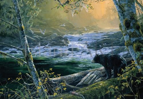 Mark Hobson - Mark Hobson - Black Bear At The Fishing Hole