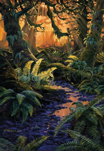 Mark Hobson - Mark Hobson - Sword Ferns And Maples