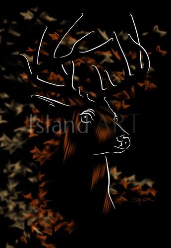 Stefanie Clark - Stefanie Clark - White Tail Deer
